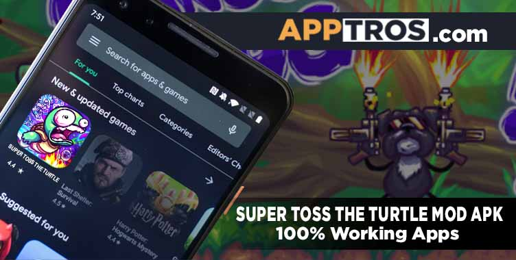 Super toss the turtle banner